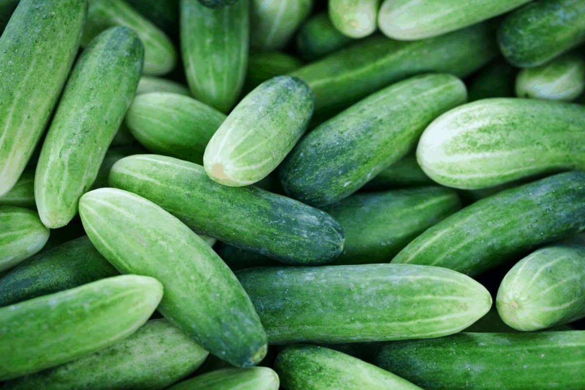Best way to store cucumbers