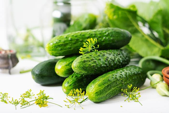 Here's How to Store Cucumbers from the Garden Properly and Keep Them Fresh All Week
