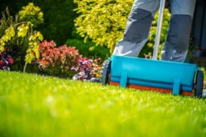 The Best Weed and Feed for Spring Lawn Application