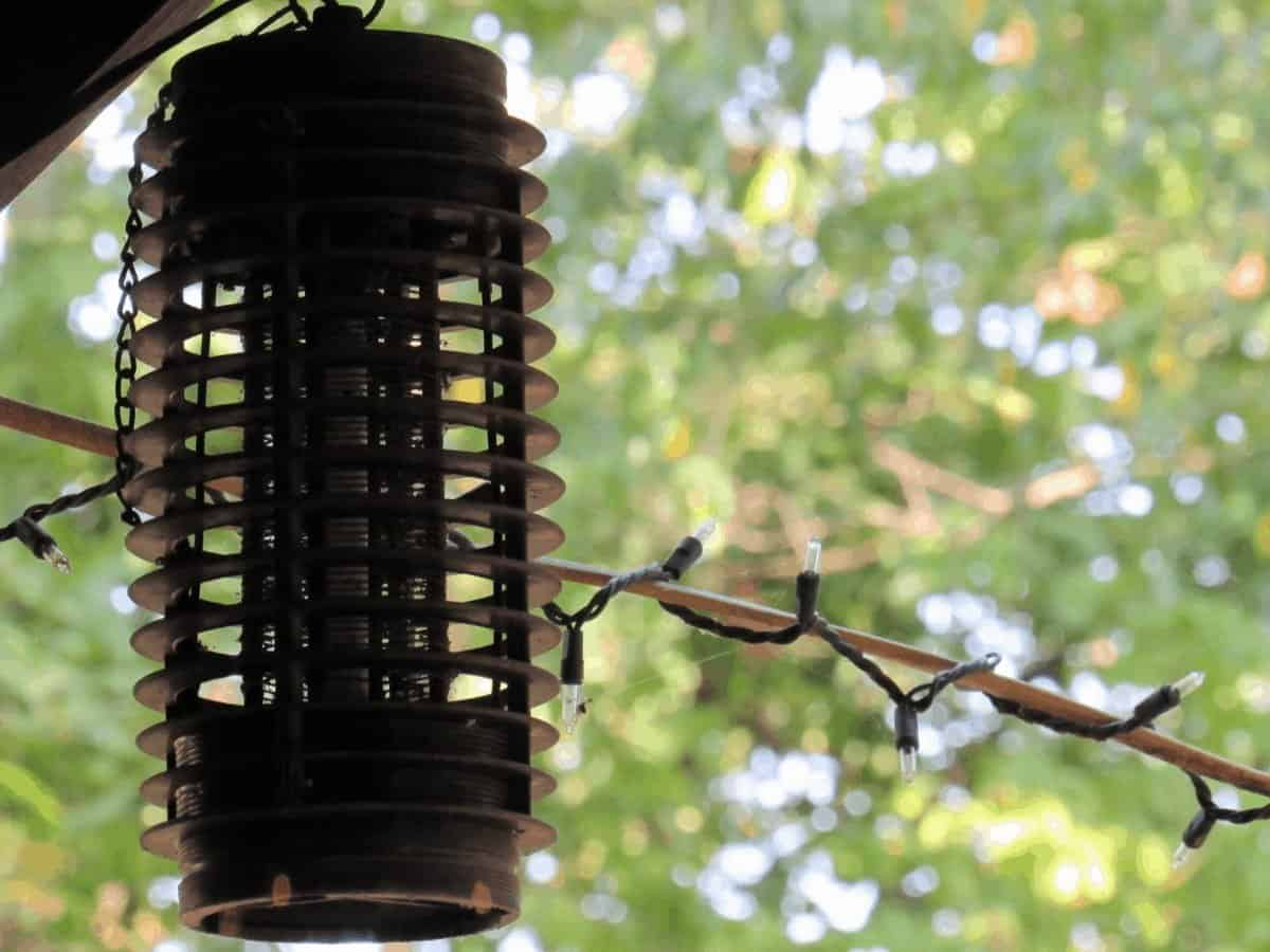 best outdoor bug zapper