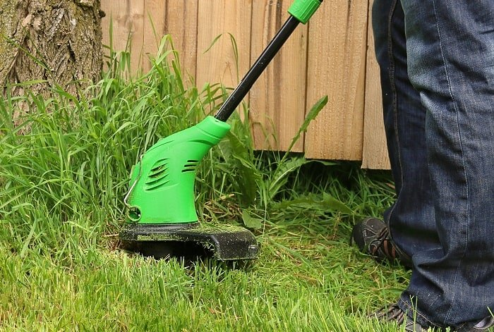 Electric Weed Wacker: What to Know When Picking a Weed Whacker