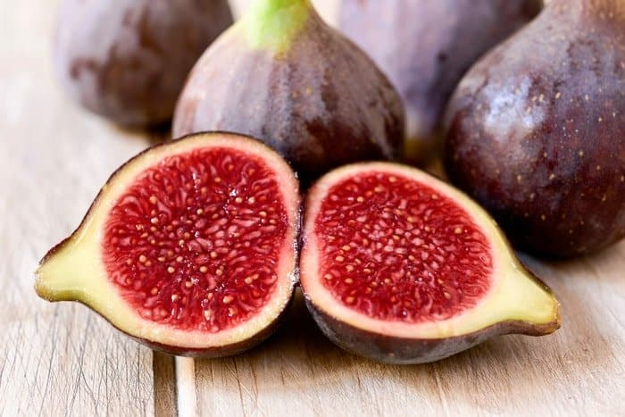 How to Grow a Fig Tree From a Cutting: Additional Tips and Tricks