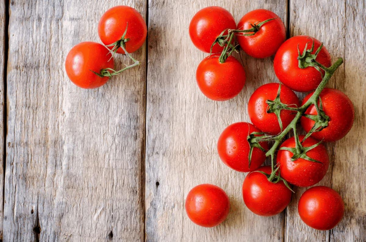 A Guide to Why Tomatoes Don't Turn Red