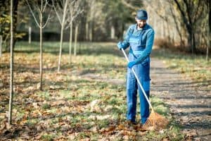4 Best Lawn Sweeper For A Well Manicured Lawn