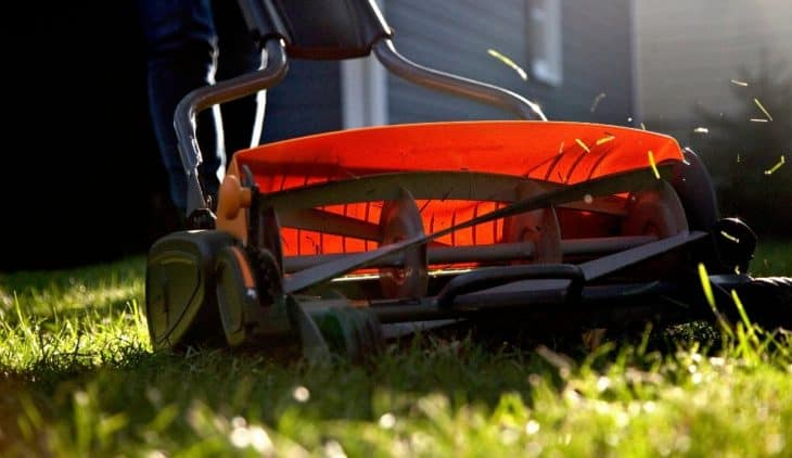 7 Best Reel Mower For Your Lawn