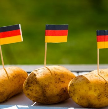 How To Grow German Butterball Potato
