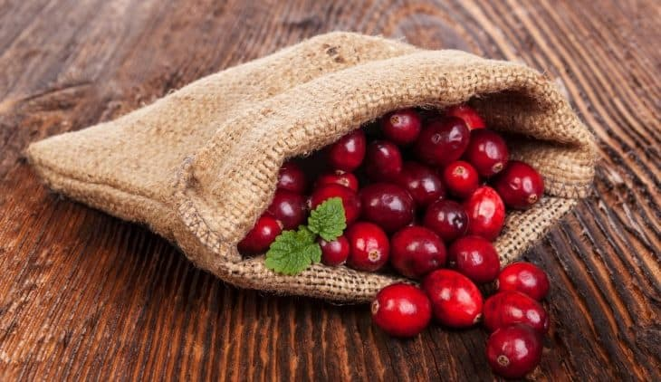 What Identifies a Cranberry as Ripe