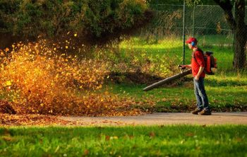 5 Best High CFM Leaf Blowers – A 2021 Guide
