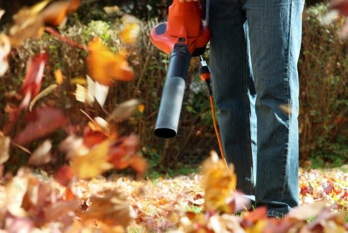 Important Features to Consider for the Most Powerful Leaf Blowers