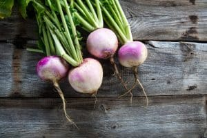 Do turnips have seeds - A quick look