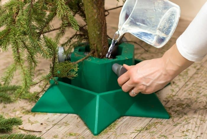 Boil Water For Christmas Tree Tips