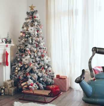 Boil Water for Christmas trees – A Myth or It works?