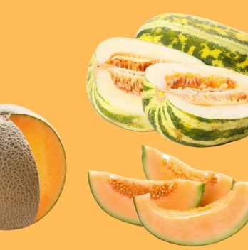 What is the Difference Between Cantaloupe and Muskmelon