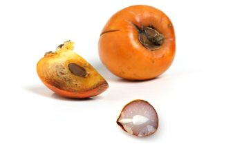 How to Open a Persimmon Seed