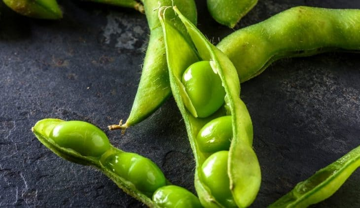 When to Harvest Edamame - A Quick Guide