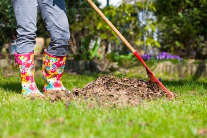 Clean Up Your Garden During The Fall Season