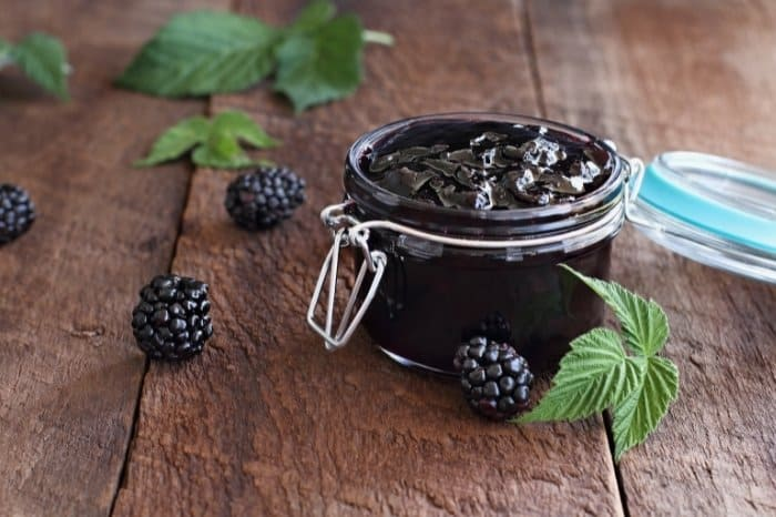 Favourite Blackberry Recipes To try