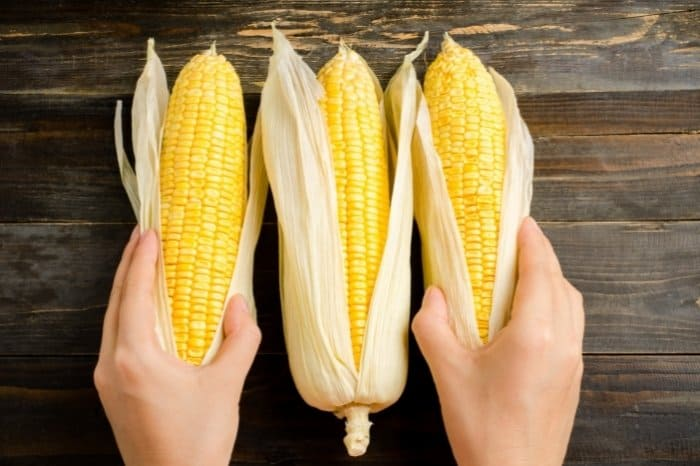 Types Of Sweet Corn You Can Plant