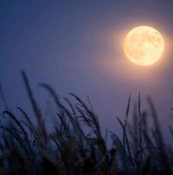 What Does A Harvest Moon Mean?